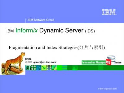 Fragmentation and Index Strategies(分片与索引)
